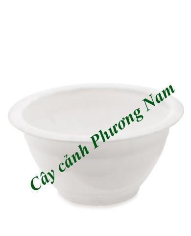 Chậu nhựa tròn 28 x 15 cm (trắng)